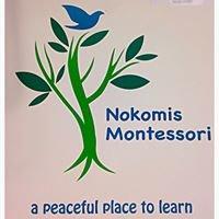 Nokomis Montessori Magnet School