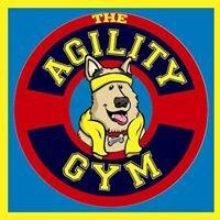 The Agility Gym