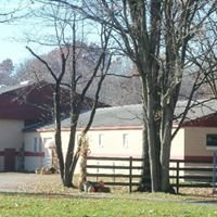 New Beginning Stables