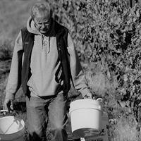 Basalt Cellars Winery