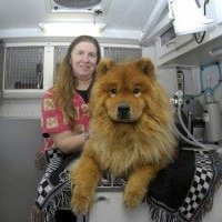 Dr. Schmid's Mobile Veterinary Practice