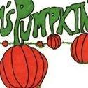 Tom's Pumpkin Farm