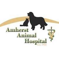 Amherst Animal Hospital