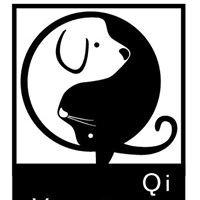 Qi Veterinary Clinic
