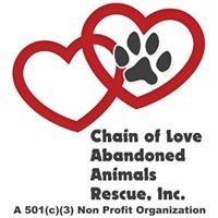 Chain Of Love  Abandoned Dogs Everglades  Homestead Fl  Mirta's Resc Grp