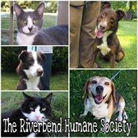 Riverbend Humane Society No-Kill Animal Shelter