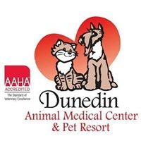 Dunedin Animal Medical Center