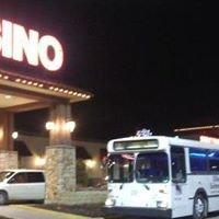 Biggest Party Bus