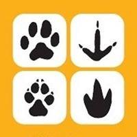VCA All Pets Hospital