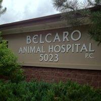 Belcaro Animal Hospital P.C.