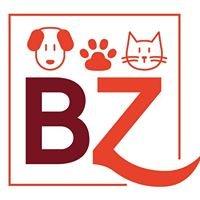 Bauzaar-it