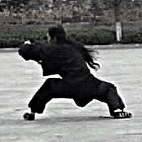 Wu Long Gongfu - Wudang TAI JI Srbija