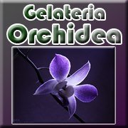 Gelateria Orchidea