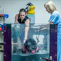 West Chester Veterinary Rehabilitation Specialty Center