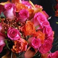 The Flower Shoppe in Blaine, MN