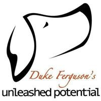 Unleashed Potential K9 - Halifax