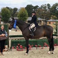 Aubrey Hill Equestrian