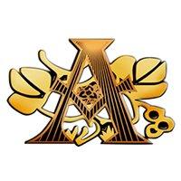 Agostea Bamberg