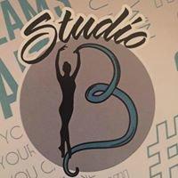 Studio 13 Dance Academy