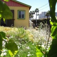 City Heights Remedy Garden