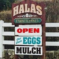 Halas Farm Market