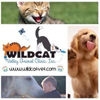 Wildcat Valley Animal Clinic