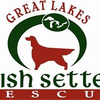 Great Lakes Irish Setter Rescue