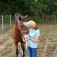 Curly Horse Rescue, Inc.