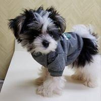 Schultz Veterinary Clinic