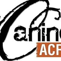 Canine Acres