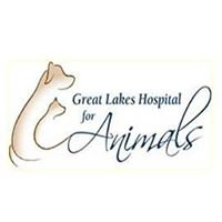 Great Lakes Hospital for Animals