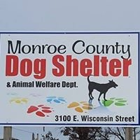 Monroe County Dog Shelter & Animal Welfare Department