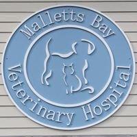 Malletts Bay Veterinary Hospital