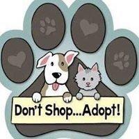 Hope Animal Shelter, Hope, Arkansas