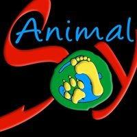 Animal Soy