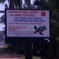 Kosgoda Sea Turtle Conservation Project