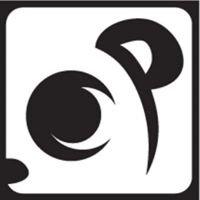 Eye Of A Panda // Photography