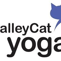 alleyCat Yoga