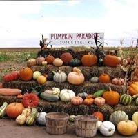 Pumpkin Paradise, LLC