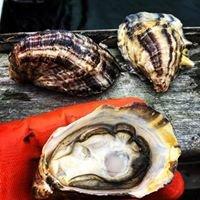 Drayton Harbor Oyster Company
