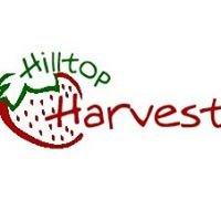 Hilltop Harvest