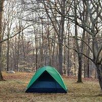 Hoyt Scout Camp