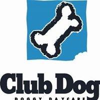 Club Dog Doggy Daycare