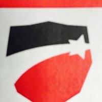 Southeast Auto Shield