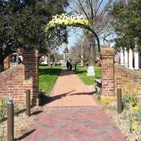 Daffodil Festival - Gloucester, Virginia