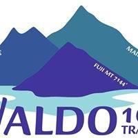 Waldo 100k