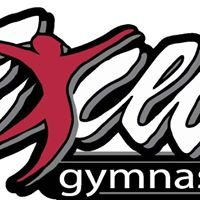 Excel Gymnastics Alaska