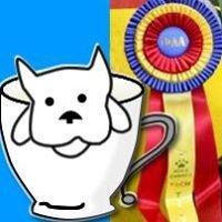Teacup Dogs Agility Association