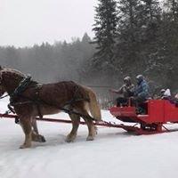 Adams Farm, Wilmington Vermont