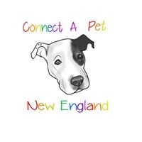 Connect A Pet New England